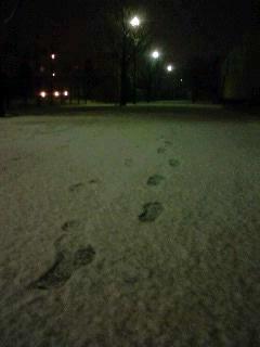夜の散歩?♪